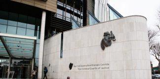 Dublin Man Gets 8 Years In Jail