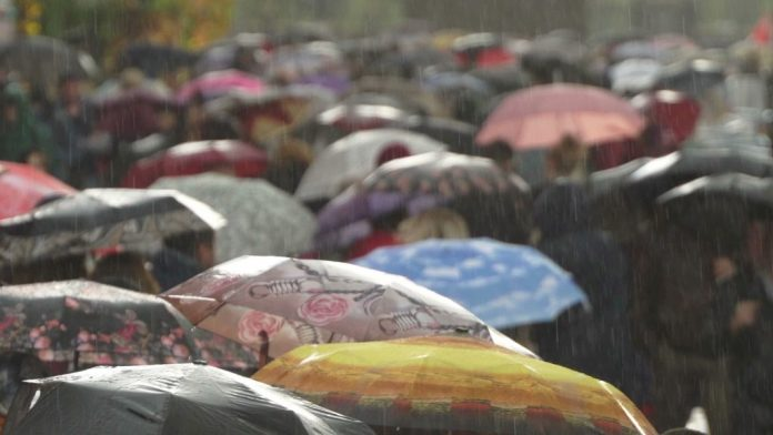 Status Yellow Rainfall Warning In Place