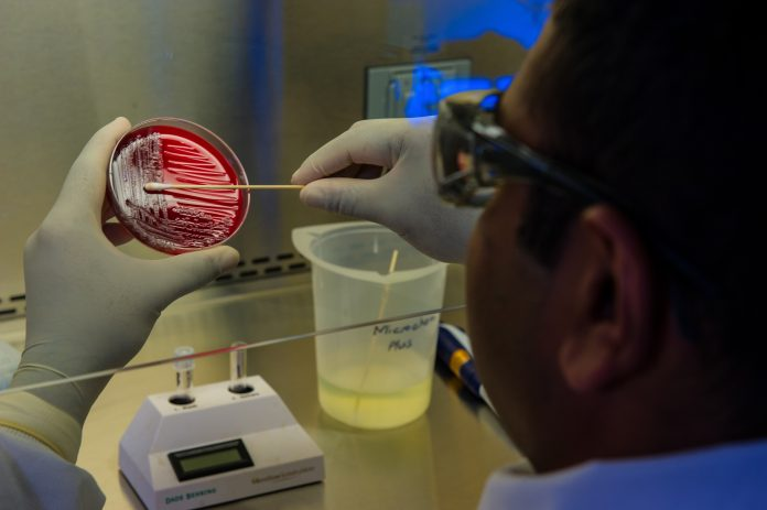 Dublin Company's Covid Antigen Test Could Be Game Changer