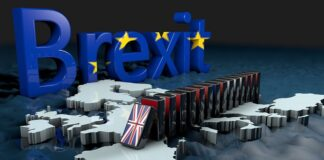 Brexit-Forces-DPD-To-Pause